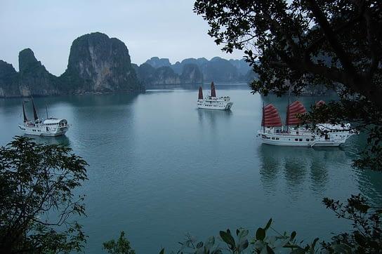 Beautiful Landscape, Vietnamese Junks at anchor Halong Bay