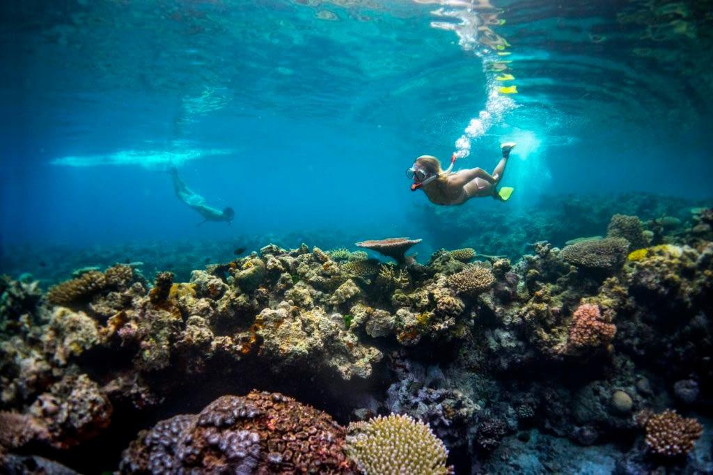 Vanuatu Underwater Adventure