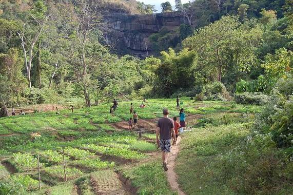 Tad Suong Village Farm