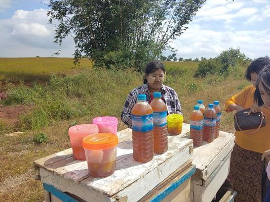 Buying Honey Shan State Myanmar
