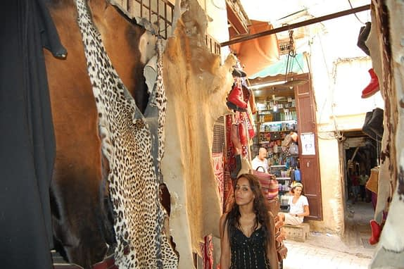 Lion and leopard skin rugs Medina of Fez