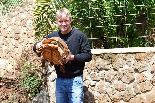 Tortoise at the Mamba Village Crocodile Farm