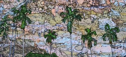 Pulau Pinang Betel Nut Palms